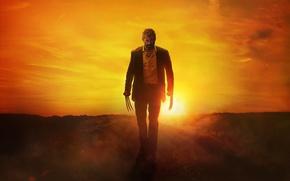 Wallpaper cinema, blood, Wolverine, Hugh Jackman, X-Men, Logan, sun, man, Marvel, movie, film, angry, fury