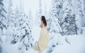 Wallpaper forest, girl, snow, frost, cold, Lichon, Cold Winter
