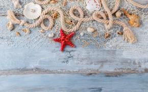 Wallpaper marine, seashells, shell, sand, sand, wood, starfish, perl, pearl, still life