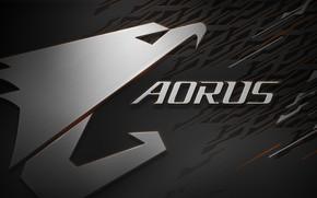 Wallpaper logo, AORUS, GIGABYTE, eagle