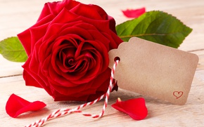 Wallpaper red roses, buds, heart, love, valentine`s day, roses, romantic, roses, red, flowers