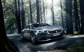 Picture Concept, the concept, Peugeot, Peugeot, Exalt