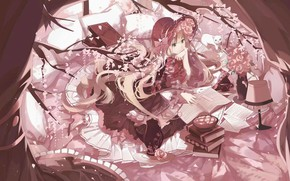 Picture cat, girl, lamp, roses, notebook, Gosick