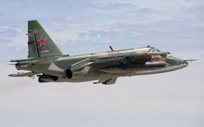 Picture Su-25, attack, Russian