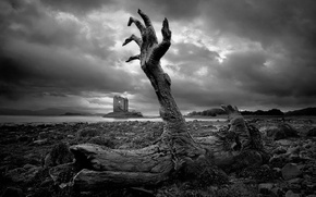 Picture zombie, sky, dead, fortress, clouds, rocks, sadness, stones, death, still life, castle, hand, trunk, gray, …