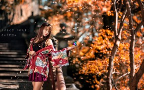 Picture autumn, girl, Asian