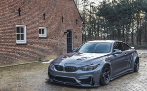 Picture BMW, Liberty, Walk, M4