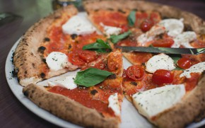 Picture cheese, pizza, sauce, Basil, tomato sauce