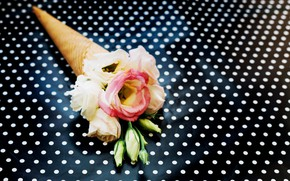Picture Flowers, Background, Eustoma, Waffle cone, Peas