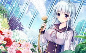 Picture girl, flowers, the game, Anime