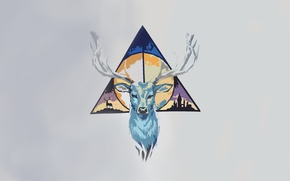 Picture minimalism, deer, triangle, Harry Potter, the deathly Hallows