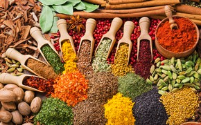 Picture spices, Chile, cardamom, cuts, curry, cumin, saffron, mustard, Muscat