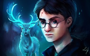 Picture art, Harry Potter, by Ludmila-Cera-Foce
