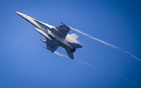 Picture flight, Super Hornet, carrier-based fighter, FA-18F