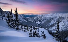 Picture winter, snow, trees, mountains, dawn, valley, the snow, Washington, The cascade mountains, Washington State, Cascade …