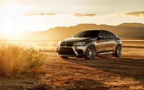 Picture the sun, design, desert, rays of light, BMW X6M