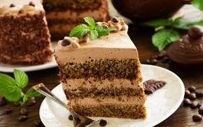 Picture chocolate, cake, layers, cream, dessert, piece of cake