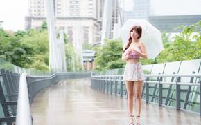 Picture the rain, summer, girl, face, umbrella, hair, skirt, legs