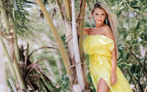 Picture look, the sun, decoration, nature, pose, model, makeup, dress, hairstyle, blonde, beauty, is, in yellow, ...