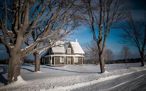 Wallpaper winter, house, road