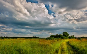 Picture road, the sky, clouds, meadow