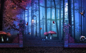 Wallpaper forest, mushrooms, Magical Gate To Artistic Forest, gate