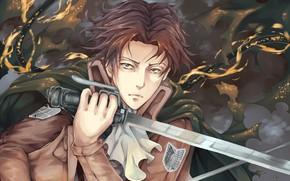 Picture anime, asian, manga, japanese, asiatic, Shingeki no Kyojin, Attack On Titan, shounen, 008