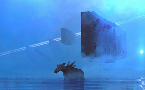 Picture the sky, water, mountains, fog, star, facilities, moose, neo genesis