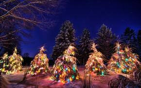 Wallpaper garland, New year, night, snow, tree, winter, the sky