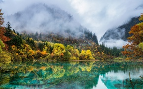 Wallpaper autumn, mountains, nature, fog, lake, paint, China, forest