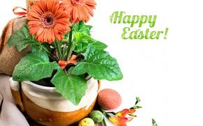 Picture holiday, Easter, gerbera, Easter eggs, decor, freesia, Anya Ivanova