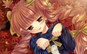 Picture autumn, girl, Touhou