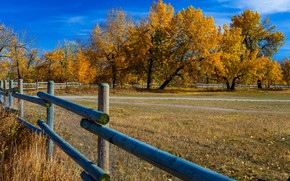 Picture autumn, the sky, trees, the fence, Canada, Albert
