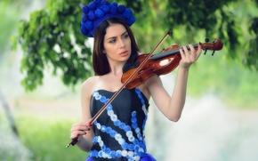 Picture girl, violin, model, dress, Almis Misca