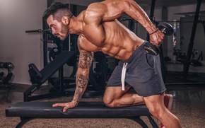 Wallpaper muscles, dumbbell, tattoo, simulators, exercise, the gym, male, shorts, figure, bodybuilding, athlete, pose