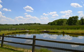 Picture Nature, Pond, Field, Nature, Pond, Fields