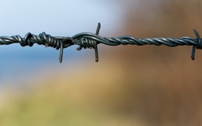 Picture background, the fence, wire, barbed wire