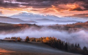 Wallpaper autumn, mountains, fog, morning, Carpathians