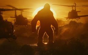 Wallpaper cinema, army, movie, gorilla, film, strong, Kong: Skull Island, Skull Island, King Kong: