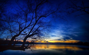 Picture the sky, clouds, lake, tree, glow