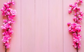 Wallpaper flowers, branches, background, pink, wood, pink, blossom, flowers, spring