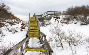 Picture winter, snow, ladder