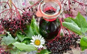 Picture Berry, Juice, Elder, Black Elderberry