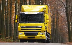 Picture road, autumn, trees, yellow, van, DAF, DAF, platform, 4x2, DAF CF