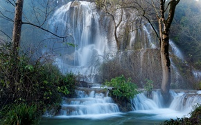 Picture forest, trees, rock, France, waterfall, cascade, the bushes, Larnas