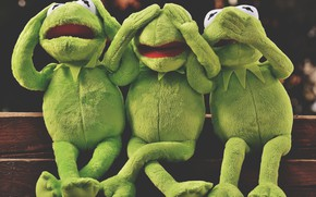 Picture Emotions, The Muppets, Do not say anything, Can't see anything, Kermit, Can't hear anything