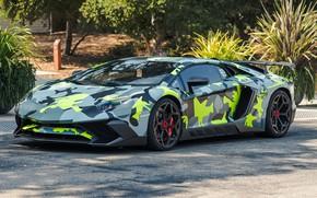 Wallpaper Tuning, Lamborghini, Avendator, camouflage