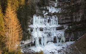 Picture ice, winter, trees, rocks, waterfall, Italy, Trentino-Alto Adige / Südtirol, Trento, Ragoli