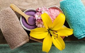 Picture flower, Lily, towel, Spa, sea salt