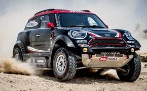 Picture Sand, Auto, Mini, Dust, Wheel, Sport, Machine, Speed, Race, The hood, Rally, SUV, Rally, The …